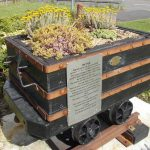 Coal Tub Carrville Flowers