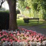 Belmont Cemetery Flowers